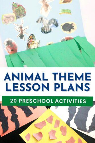 20 Preschool Animal Theme Lesson Plans