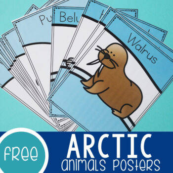 Arctic Animals Posters Featured Square Image