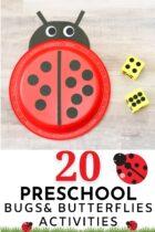 20 Preschool Bugs and Butterflies Activities