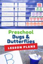Preschool Bugs and Butterflies Lesson Plans