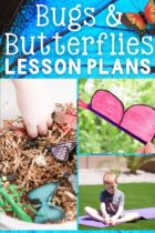 20+ Bugs and Butterflies Lesson Plans
