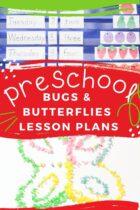 Best Preschool Bugs and Butterflies Lesson Plans