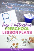 Bugs and Butterflies Preschool Lesson Plans