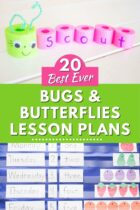 20 Best Ever Bugs and Butterflies Lesson Plans