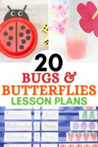 20 Bugs and Butterflies Lesson Plans