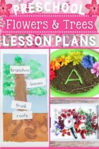 Preschool Flowers and Trees Lesson Plans