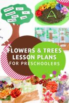 Flowers and Trees Lesson Plans for Preschoolers
