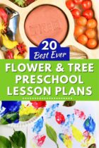 20 Best Ever Flower and Tree Preschool Lesson Plans
