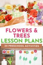 20 Flowers and Trees Theme Preschool Activities