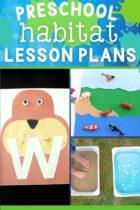 20+ Preschool Habitat Lesson Plans