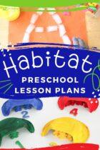 Easy Habitat Preschool Lesson Plans