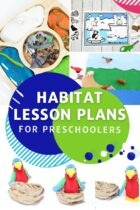 Habitat Lesson Plans for Preschoolers