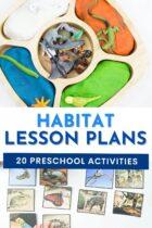 20 Preschool Habitat Lesson Plans