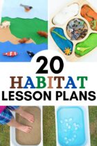 20 Habitat Lesson Plans