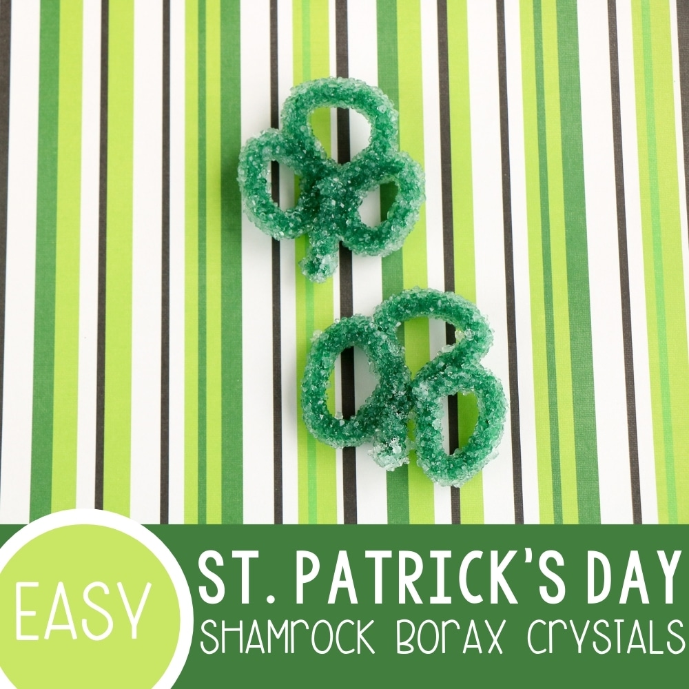 St. Patrick's Day Shamrock Borax Crystals Featured Square Image