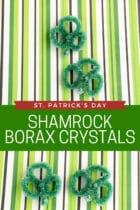 St. Patrick's Day Shamrock Borax Crystals Science Experiment