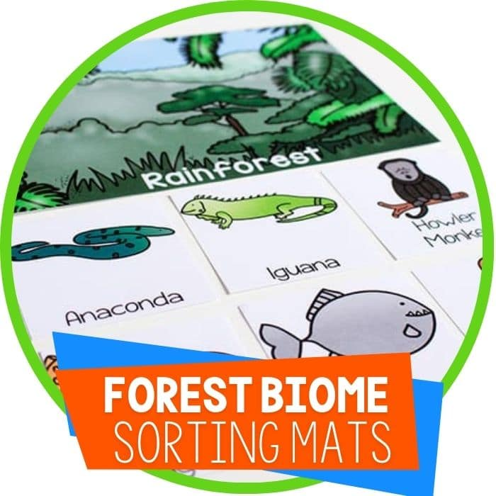 forest biome sorting mats Featured Image