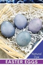 How to Dye Eggs with Blueberries