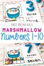 Counting mats using marshmallows.
