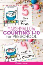 Preschool Counting Mats with Marshmallows