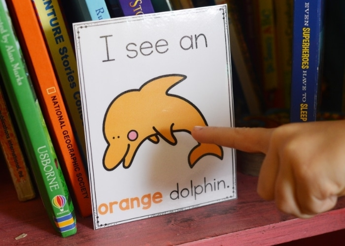 child pointing to an orange dolphin color poster