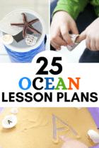 25 Ocean Lesson Plans for Preschool