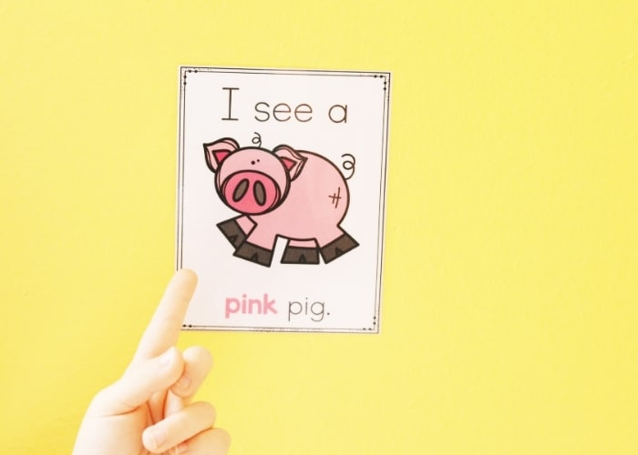 A child pointing at a farm color poster with a pig on it for the color pink.