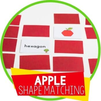 apple 2d shape matching featured image