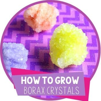 how to grow borax crystals science experiments featured image
