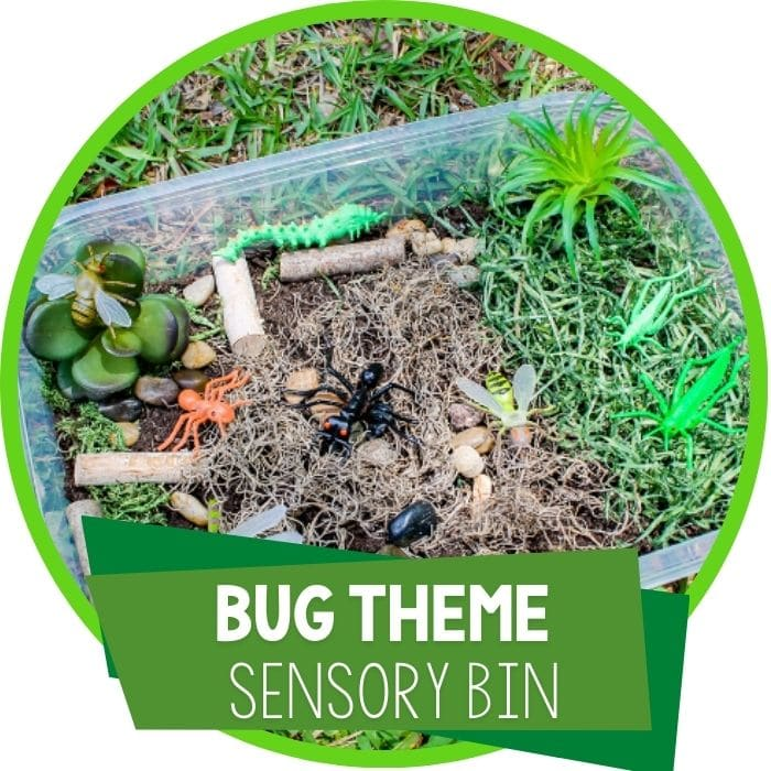 Bug Sensory Bin Activities for Preschoolers