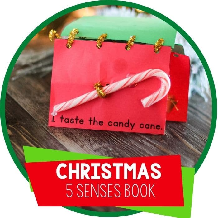 Christmas Five Senses Book Activity for preschoolers.
