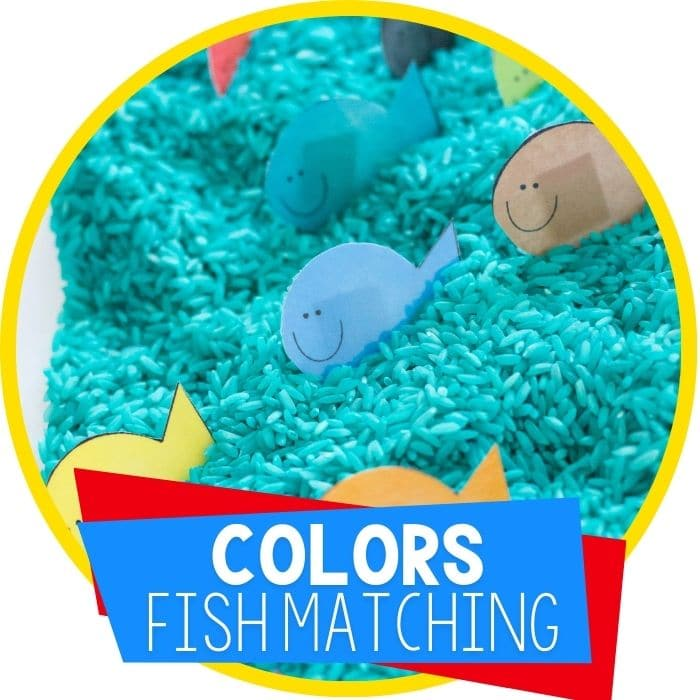 color fish matching sensory bin featured image