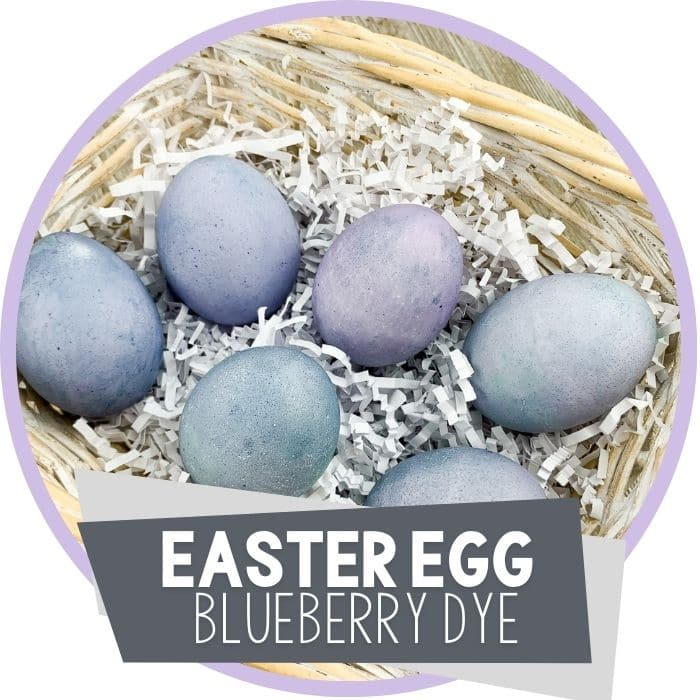 Dyeing Easter Eggs with Blueberries