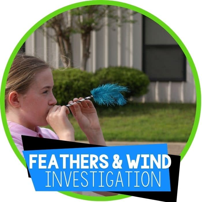The Feather Experiment: Learning about Wind