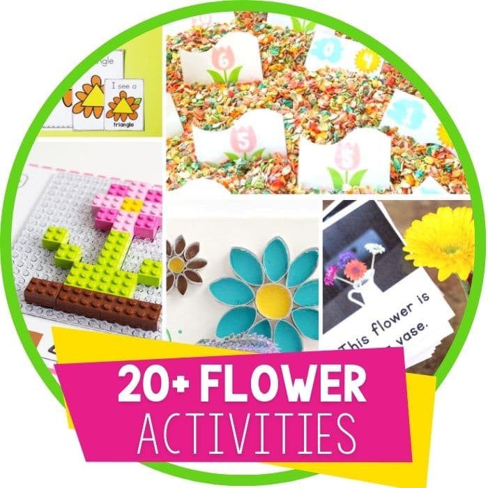 30+ Hands-On Flower Activities for Kids