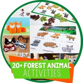 forest animal activities featured image