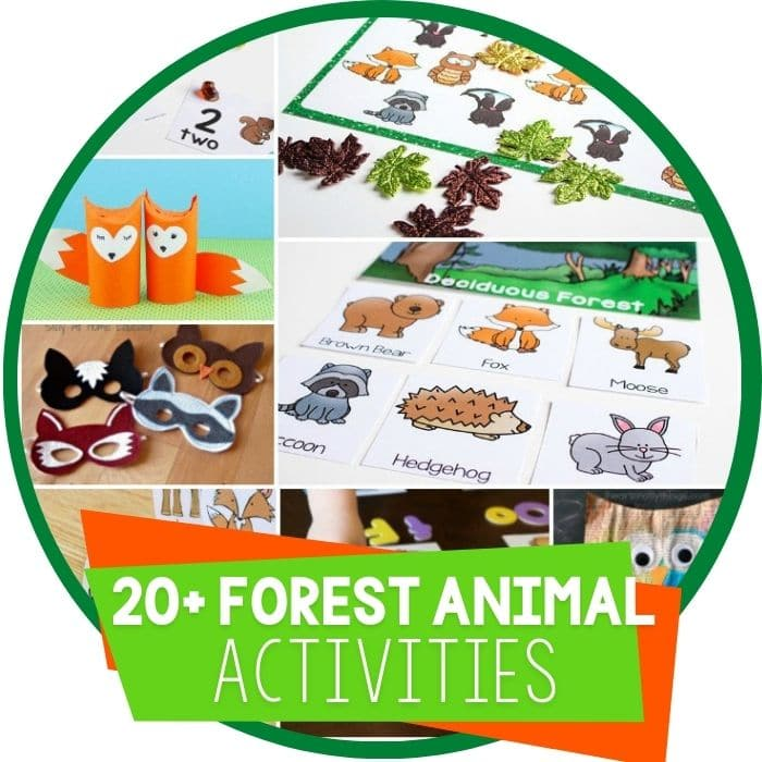 Fun Ideas For A Forest Animal Unit Study
