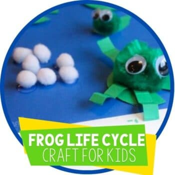 frog life cycle fine motor craft for science featured image