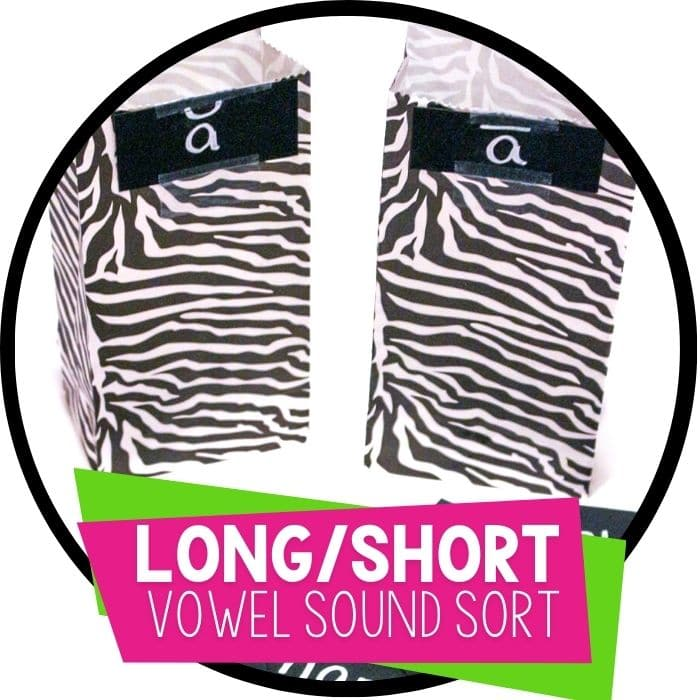 long and short vowel sound sort two bags for long a and short a