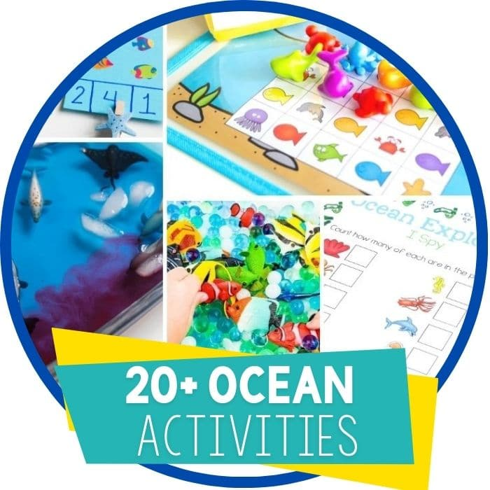 Create an Awesome Ocean Unit Study