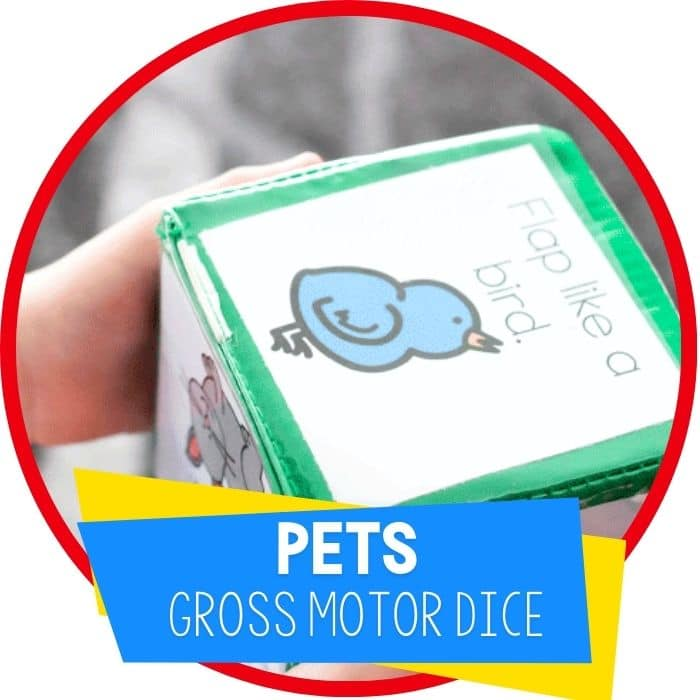 pets gross motor dice game brain break featured image