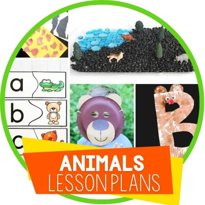 preschool lesson plans animal featured image