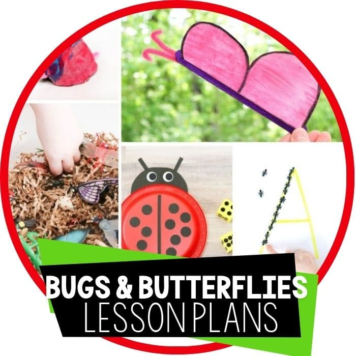 Easy Bug and Butterfly Theme Lesson Plan for Preschool