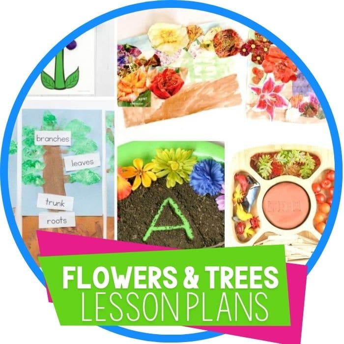 Flower and Tree Theme Preschool Lesson Plans