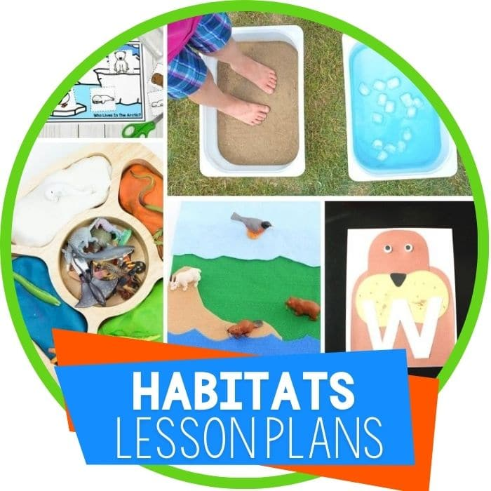 preschool lesson plans habitats featured image