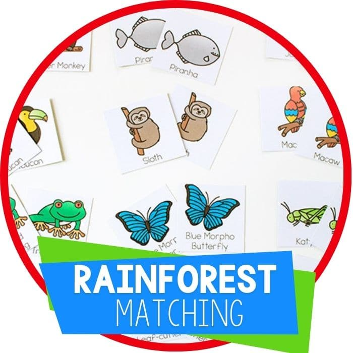 rainforest animarainforest animal matching game featured image