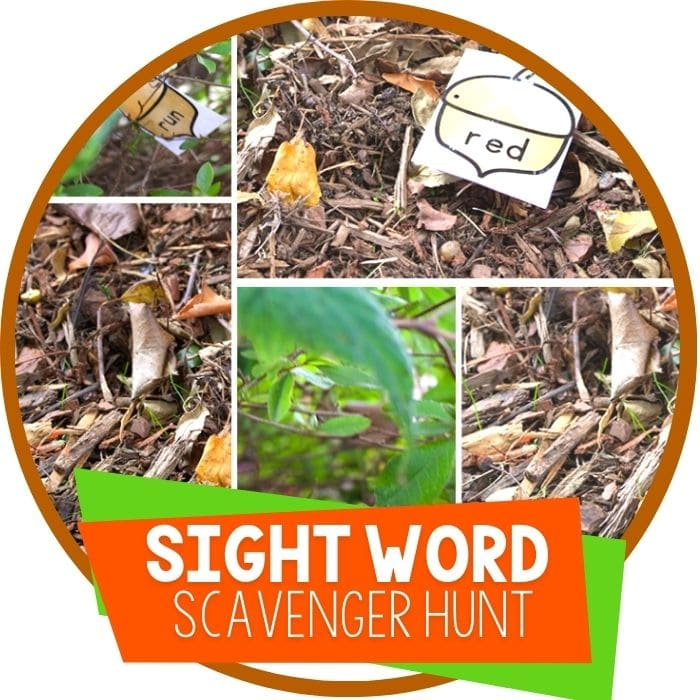 Sight Word Scavenger Hunt for Fall