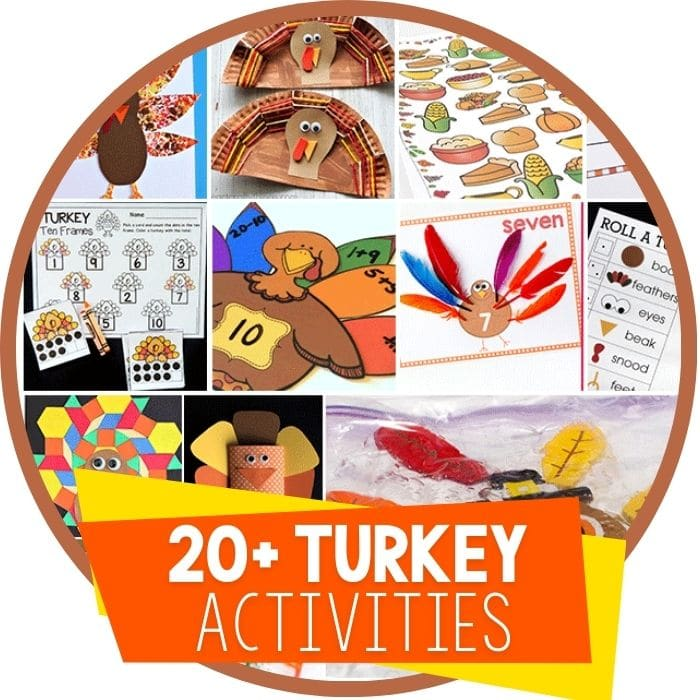 turkey activities round up Featured Image