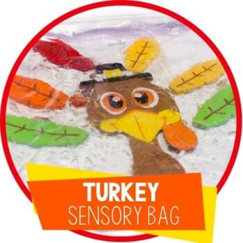 turkey sensory bag activity for toddlers featured image