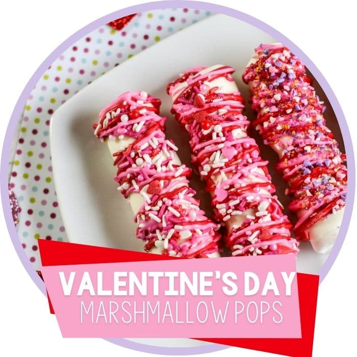 Chocolate Covered Marshmallow Pops for Valentine's Day